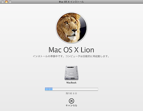 lioninstall.png