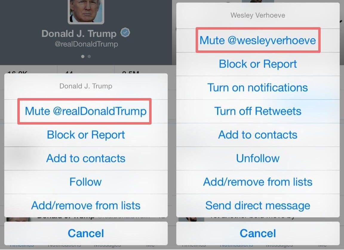 Twitter iOS Mute