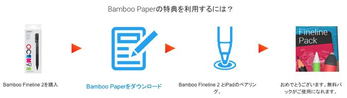 BambooFinelline2 cam p 02