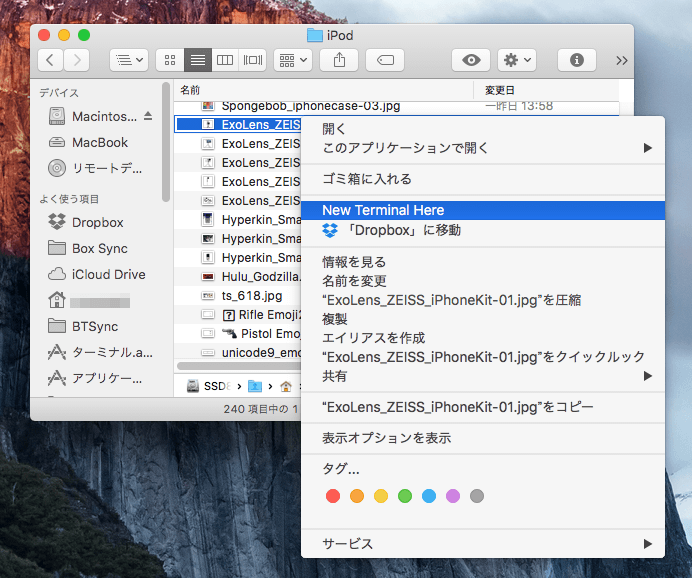 TermHere macOS Terminal 03