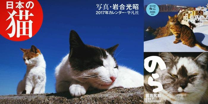 Iwagoneko calendar