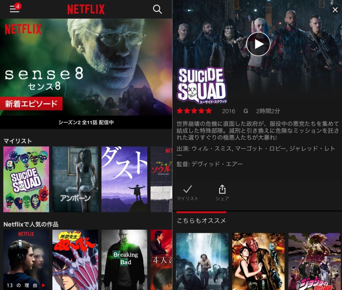 Netflix ss