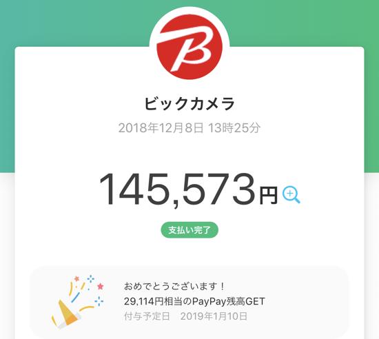 PayPay Biccamera 02