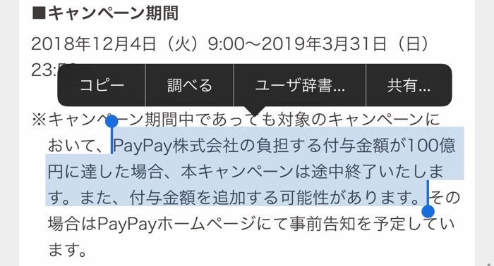 Paypay camsetsumei