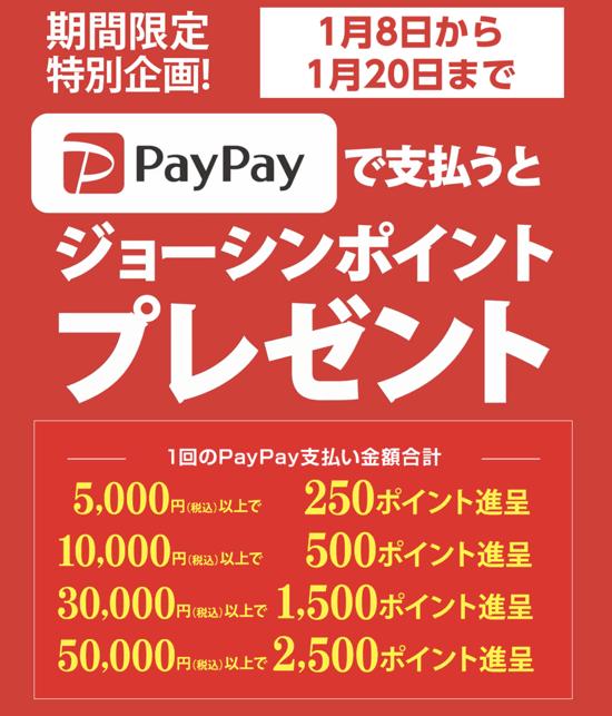 PayPay matsurika 02