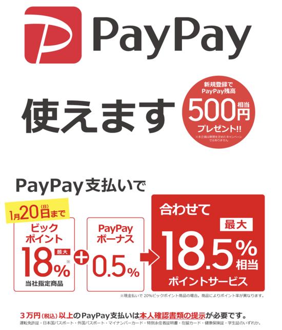 PayPay matsurika 03