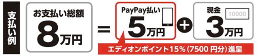 PayPay matsurika 04 1