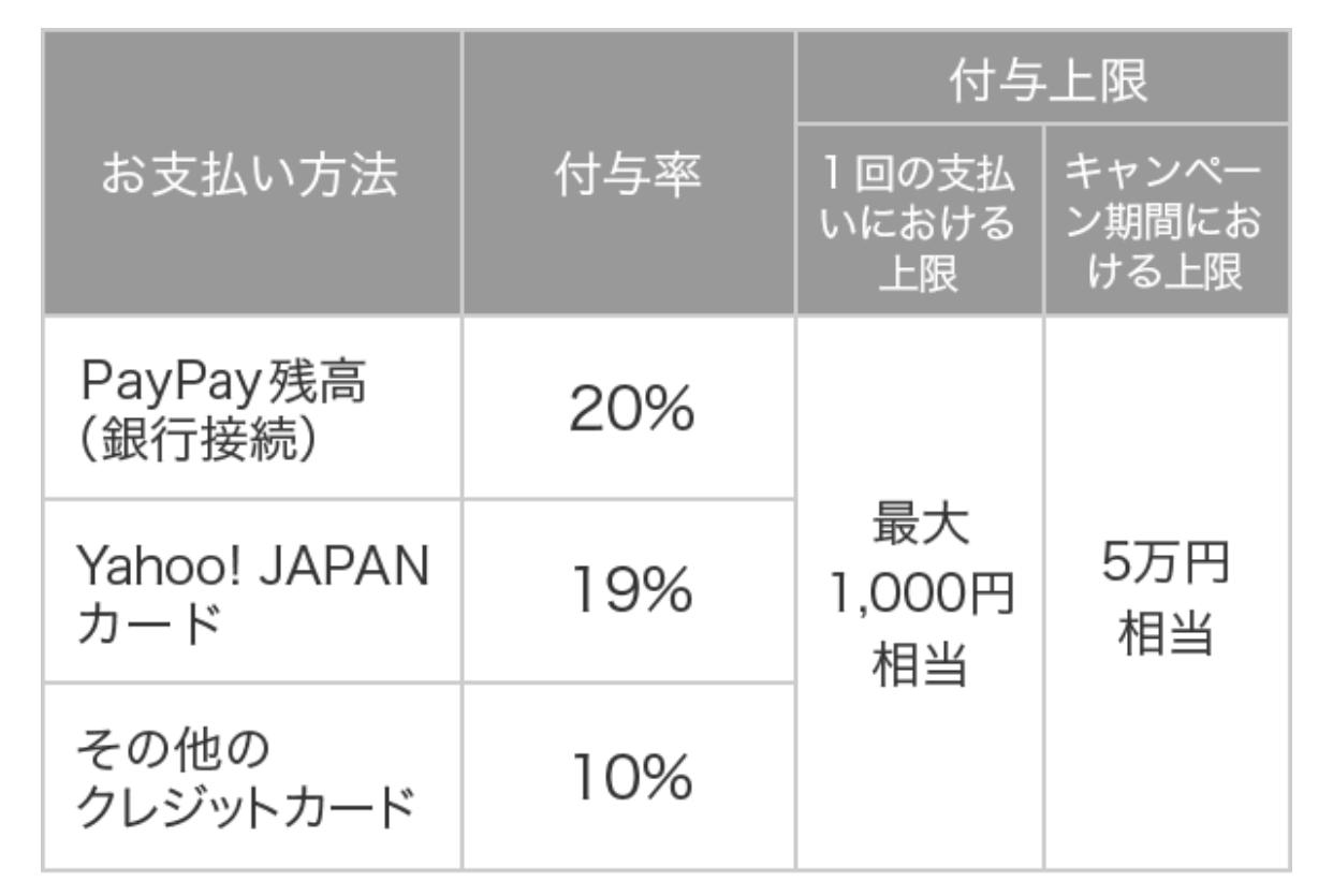 PayPay 100okucamp2 04