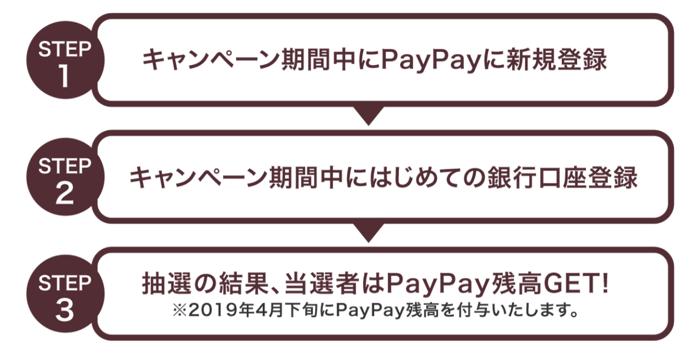 PayPay 100manyencamp 01