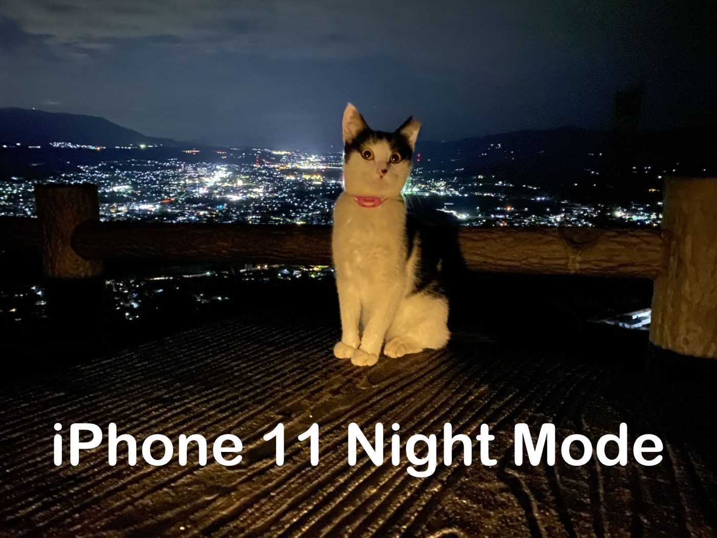 IPhone11 nightmode camera 03