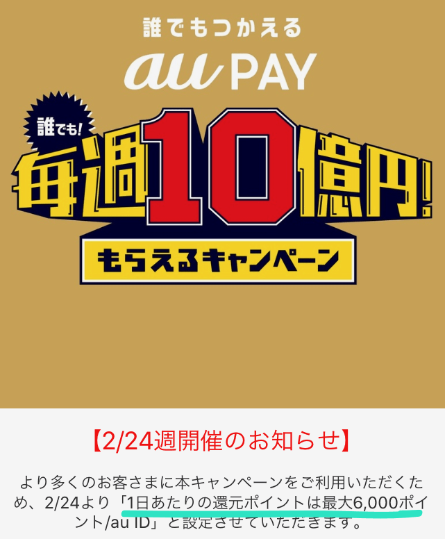 AuPay 1day6000yen 03