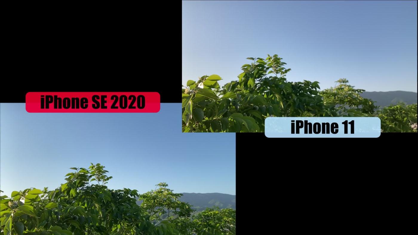 IPhoneSE2020 vs iPhone11 ProCam 01