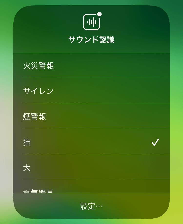 IOS14 SoundRecognition 05