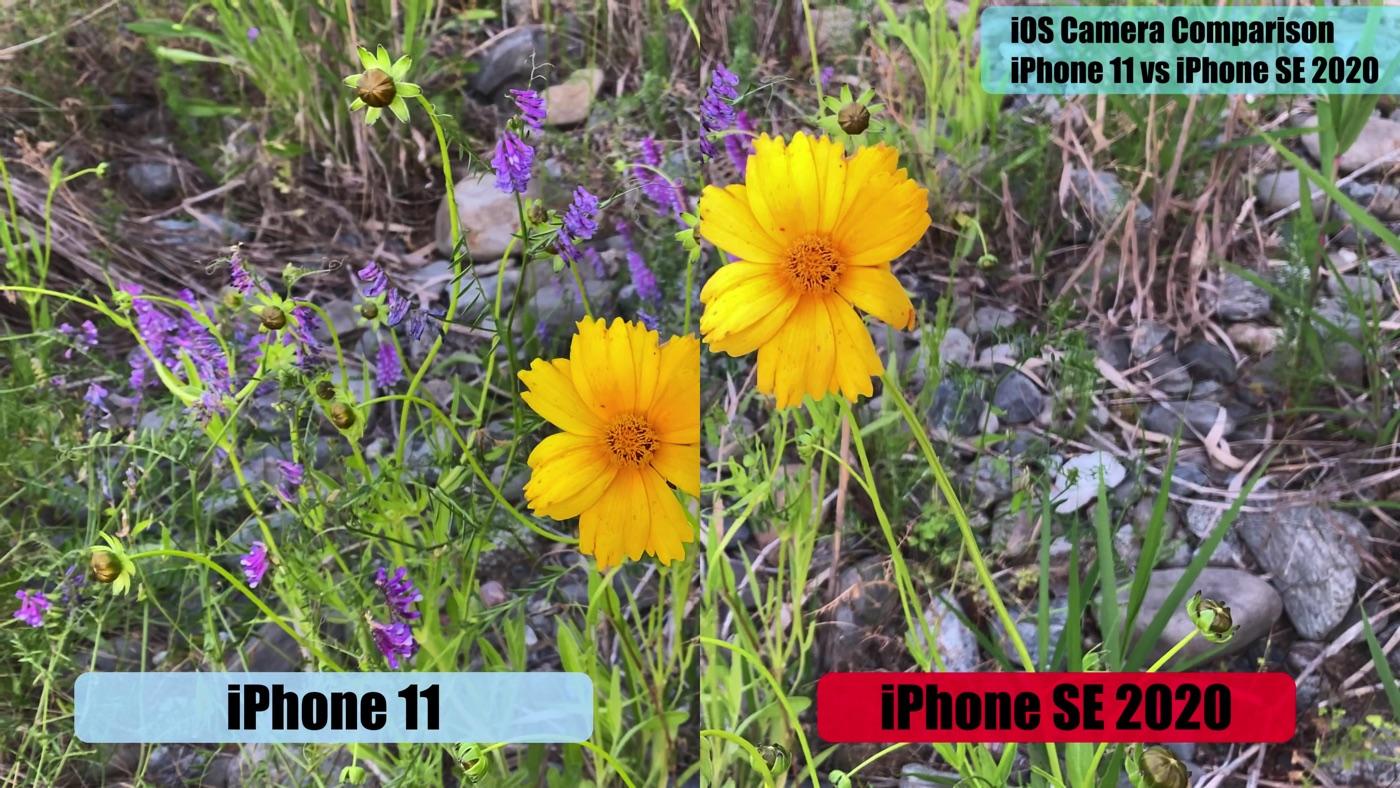 IPhoneSE2020vsiPhone11 4kvideo 02