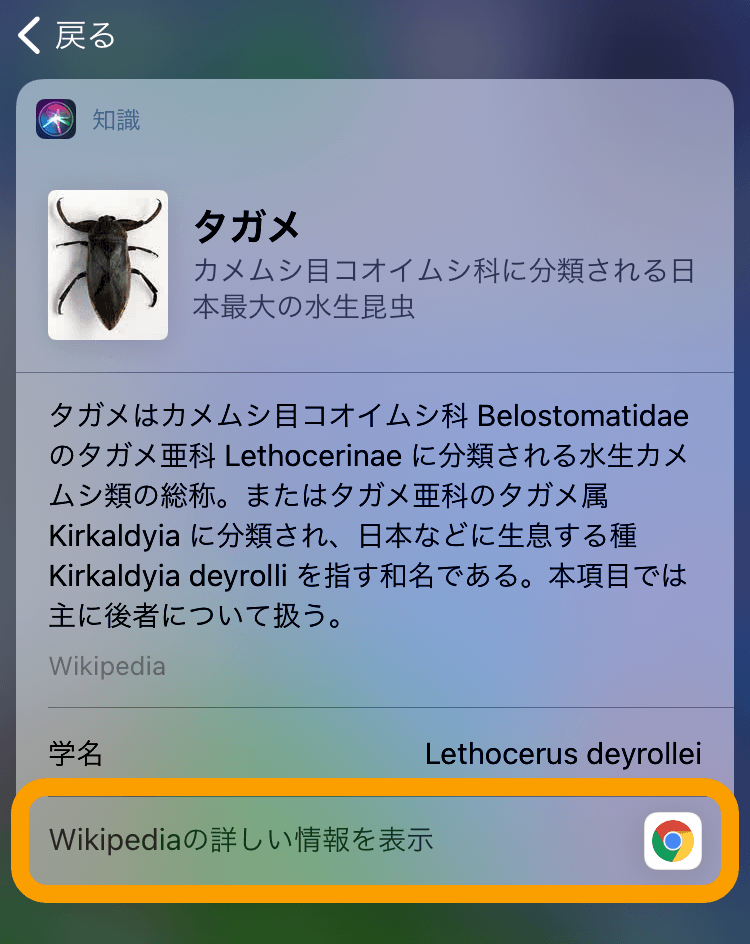 IOS14 defaultbrowser change 04
