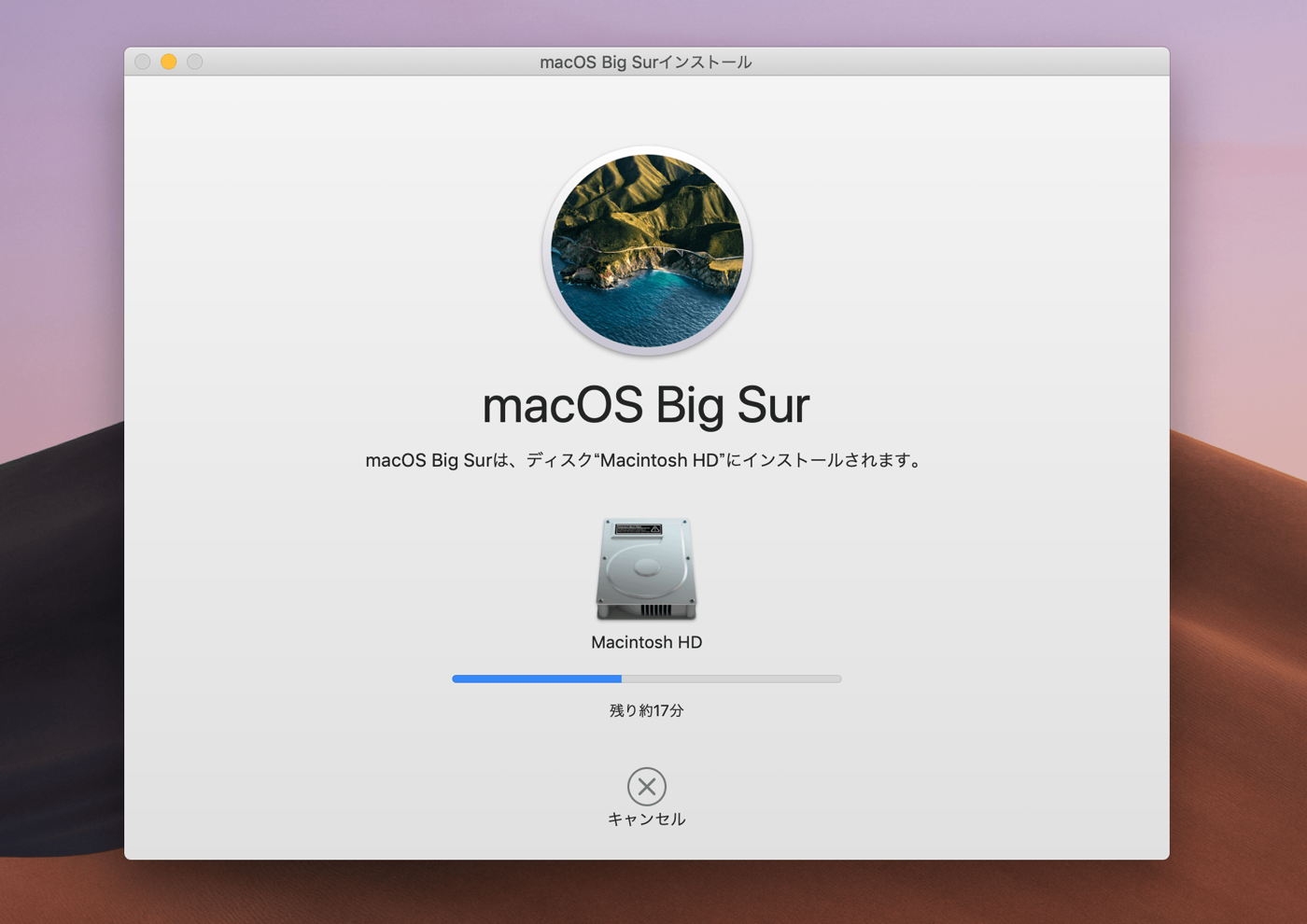 MacOSBigSur Install Update 03