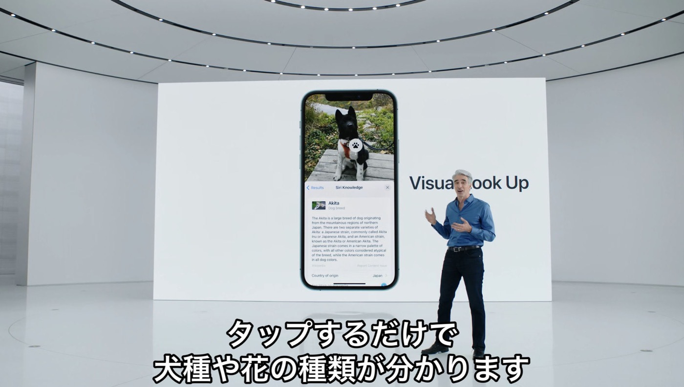 IOS15 preview 02